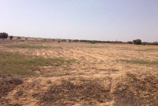 Un terrain de 1600 m2 au cœur d'une révolte des populations à Thiès
