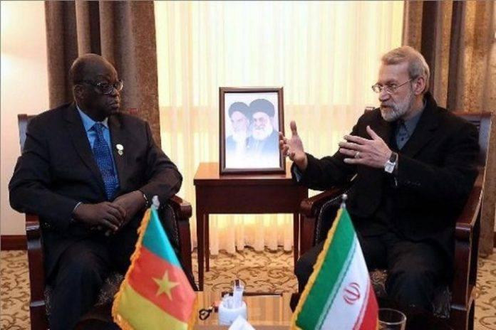 L'Assemblée défend Niasse et son drapeau camerounais