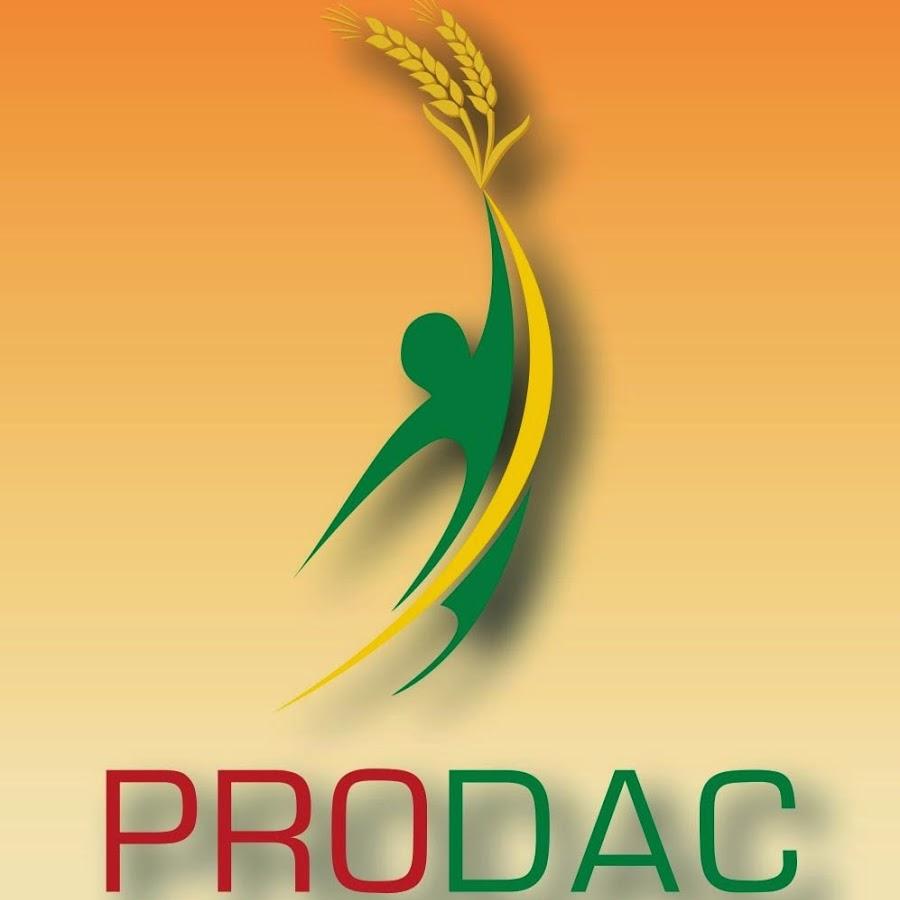 Rapport du Prodac : La bamboula des aigrefins