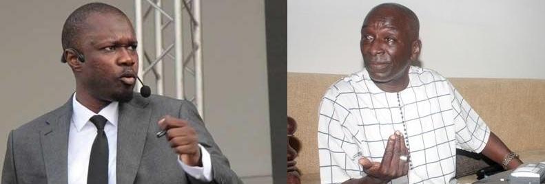 """""""La leçon fondamentale à tirer de ce scrutin est de s'atteler sans délai à la mobilisation et à l'organisation systématiques de «Sonko Président»"""