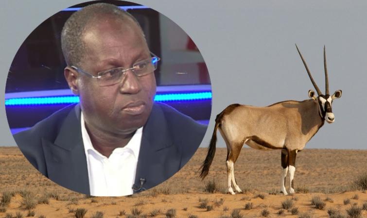 Acte de braconnage du ministre Abdou Karim Sall