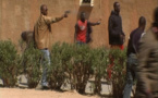 "Ndiogou Thiam,  oncle de Ndiaga Diouf : "" je suis en colère contre tous """