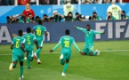 Les lions soûlent les Polonais (2-1)
