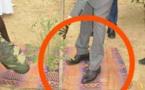 Célébration de la Journée de l'Arbre : Les pieds du ministre de l'Environnement, Abdou Karim Sall, sur la natte, enflamment la webosphère