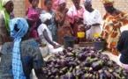 Diender : La vendeuse de légumes contamine 6 personnes et met 300 en quarantaine, le village de Thor confiné