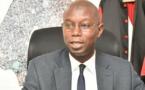 Artémisia : Que cherche le professeur Daouda Ndiaye ?